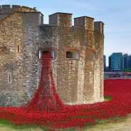 The Poppies of 2014 – Goodbye to All That?